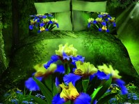 3D Bedding set - 5023