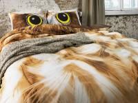 Owl 312