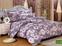 Cotton Bedding set - 11- 24